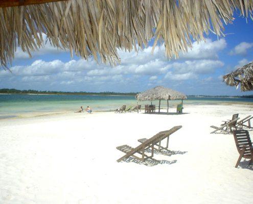 adeira-anfíbia-banho-mar